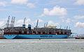 Magleby Maersk (ship, 2014) 001.jpg