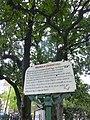 Magnolia histórica 1060349.JPG