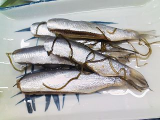 Sardines as food