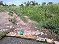 Mammu khora 5 - panoramio.jpg