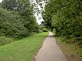 Manicured part of the Trans Pennine Trail. - geograph.org.uk - 543413.jpg