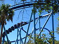 Manta at SeaWorld Orlando 36.jpg