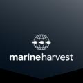 Marine Harvest Logo.png