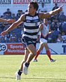 Mathew Stokes playing for Geelong.JPG