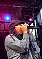 Maxi Priest at Raggamuffin Music Festival 2011 (5400506843).jpg