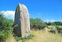 Menhir Kermaillard 0708.jpg