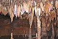 Meramec Caverns 0070.jpg