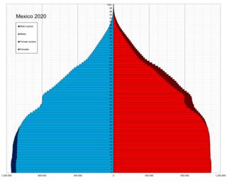 Demographics of Mexico Ethnic groups and demographics