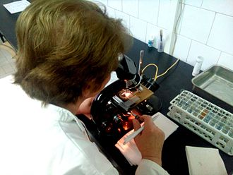 Microscopy - Microscopic examination in a biochemical laboratory