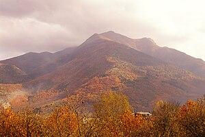 Terminio - Image: Monte Terminio