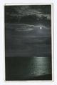 Moonlight (NYPL b12647398-68185).tiff