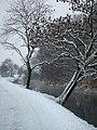 Moosach im Winter.JPG