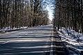 Moose island - panoramio (4).jpg