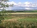 Mossland - geograph.org.uk - 436099.jpg