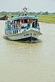 Motor Vessel Aricha - M 5118 - River Padma - Goalanda - Rajbari - 2015-06-01 2834.JPG