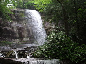 Rainbow Falls Trail - At nearly 80 feet, Rainbow Falls is the longest plunge of water in the Great Smoky Mountains National Park.