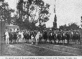 Mounted troops of armenian volunteers 1914.png