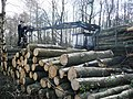 Moving the logs - geograph.org.uk - 743962.jpg