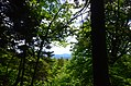 Mt Monadnock (14502957063).jpg
