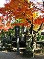 Musashizuka park.JPG