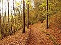 Náučný chodník Súľovské skaly - panoramio.jpg