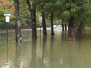 Northeast U.S. flooding of October 2005 - Moderate flooding in Bar Harbor, Maine