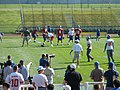 NYG QB training camp 2009.jpg