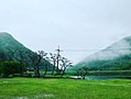 Natural beauty13 1.jpg
