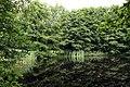 Nature reserve Libouchecké rybníčky in summer 2014 (3).JPG