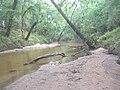 Navidad River, looking upstream - panoramio.jpg