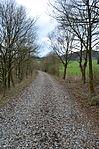 Nebenbahn Finnentrop-Wenholthausen (7066752505).jpg
