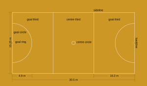 Diagram of netball court. Court is divided into thirds. Dimensions list on diagram. Position listed on diagram.