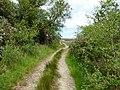 New Luce Trail - geograph.org.uk - 1359578.jpg