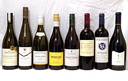 Industrial factory wine industry products