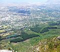 Newlands Forest viewed from Devils Peak - Cape Town 2.jpg
