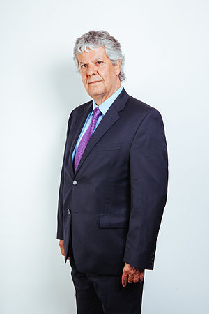 Nicolás Eyzaguirre - Official portrait of Eyzaguirre as the Minister of Education of Chile (2014)