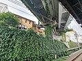 Nishiya Station.jpg