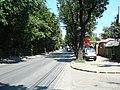 Nitu Vasile-Picturii - panoramio.jpg