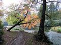 Nordteich Cemetery Hamburg-Ohlsdorf1.jpg