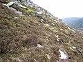 North-east slopes of Slieve Bearnagh - geograph.org.uk - 437614.jpg