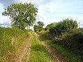 Nutley Lane, Dummer - geograph.org.uk - 228171.jpg