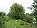 Offa's Dyke path by the side of the Wye - geograph.org.uk - 437883.jpg