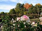 Oklahoma City, OK - EUA - Will Rogers Park - panoramio (8) .jpg