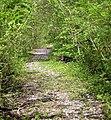 Old Carmarthen to Newcastle Emlyn railway track - geograph.org.uk - 1313271.jpg