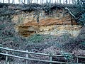 Old Quarry, Rogate, West Sussex - geograph.org.uk - 52719.jpg