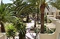Oliva Beach - Riu - Fuerteventura - 04.jpg