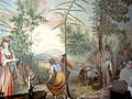 Olive harvest on wall (Villa di Geggiano).jpg