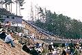 Onbashira Matsuri - panoramio.jpg