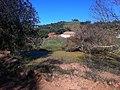 Pântano Cadaval - panoramio.jpg