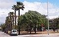 PALMA de MALLORCA, AB-004.jpg